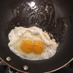 RHV eggs 1